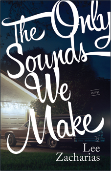 Book cover for The Only Sounds We Make
